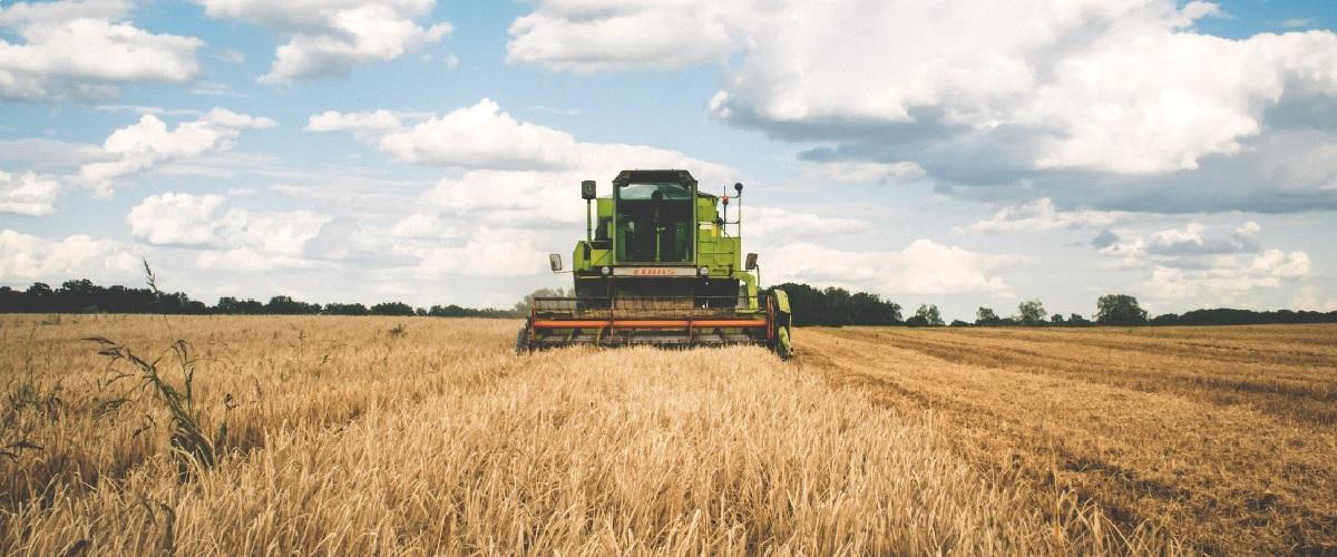 Corona-Krise Auswirkungen auf die Landwirtschaft