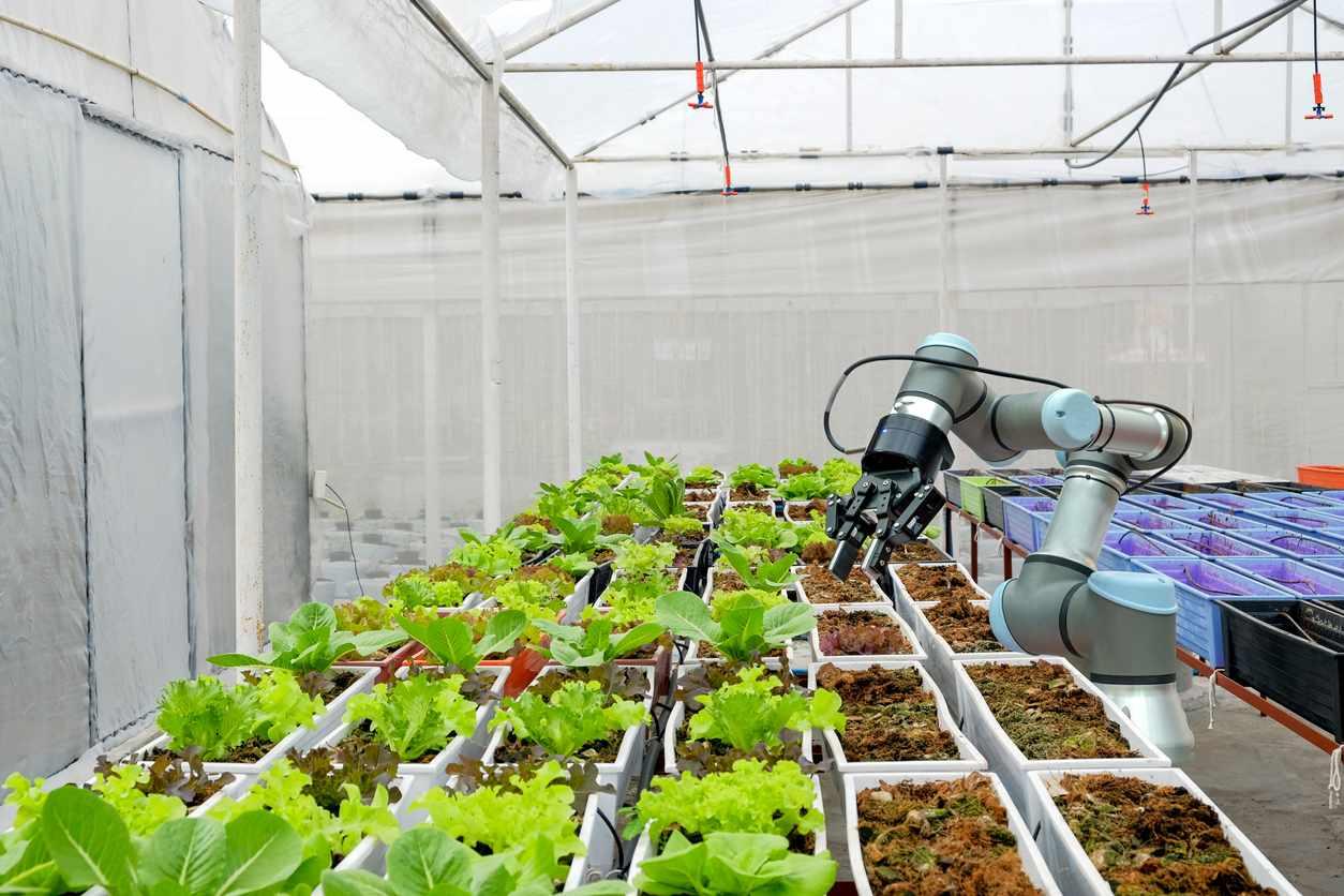 Smart Farming mithilfe von Robotern