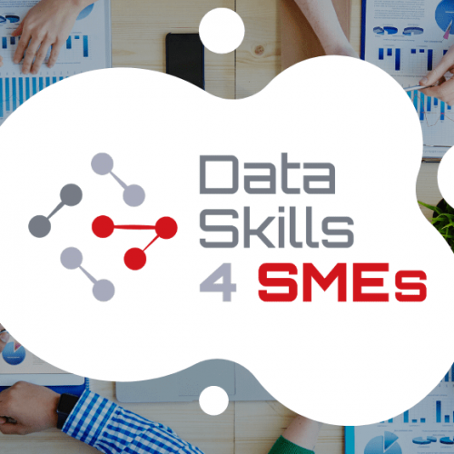 data skills 4 smes